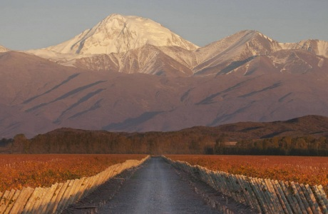If you are looking for a wine tour, this is the one!